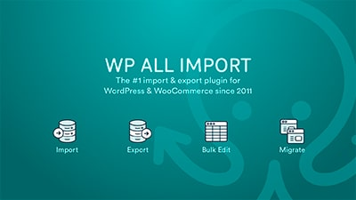 WP All Import Export